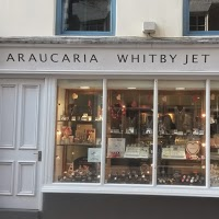 Araucaria Whitby Jet Jewellers 948132 Image 0